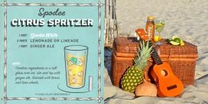 Spodee White Wine Spritzer